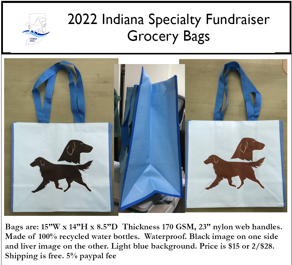 2022 Fundraiser Grocery Bags